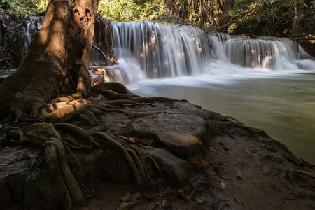 waterfall in tropical forest at the national park in Thailand with tree root as foreground Zdjęcie Seryjne