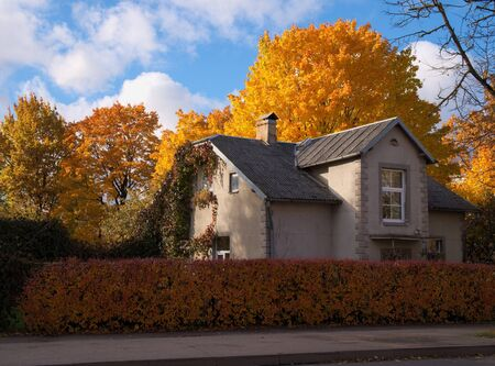 House in autumn coloured trees surrounding it