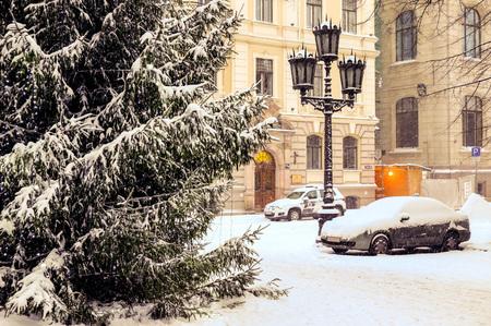 눈과 서리가 오랫동안 기다려온 겨울이 드디어 새해 전야에 왔습니다.