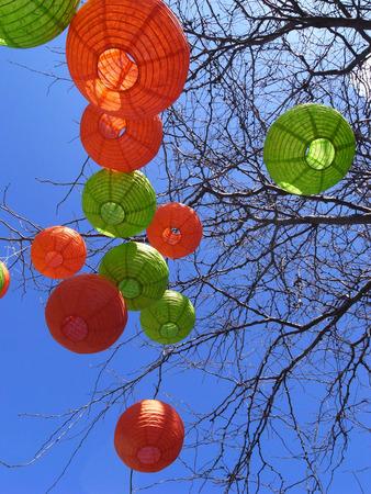 lantern on tree photo