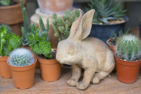 vase plaster: Vintage Rabbit ceramic plaster figure with Cactus and succulents collection in small flowerpots. The rustic interior at houseplant