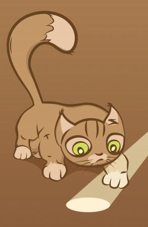 Funny cat looking at sunbeam Stock Vector - 14848132