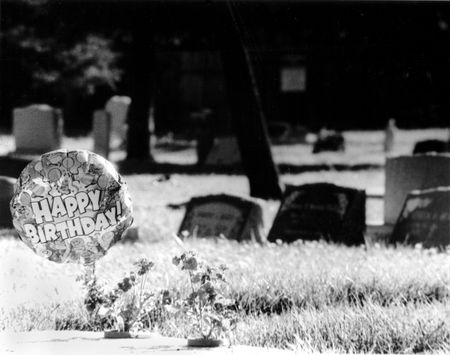 insincerity: Birthday Grave