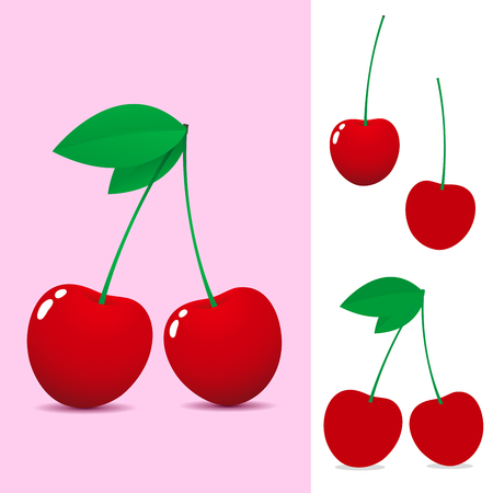 Red cherry Stock Vector - 3870580