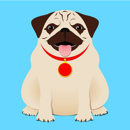 tongue: Sitting pug Illustration