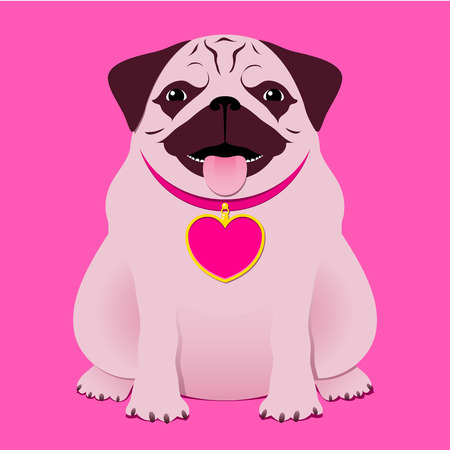 Sitting pugboxer with pink necklace with heart tag  Vector