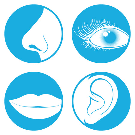 Nose, eye, mouth and ear pictograms Illustration
