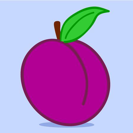 Plum - doodle Vector