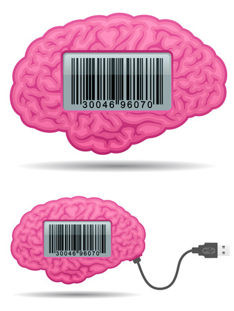 Brain with barcode screen and usb cable Vector