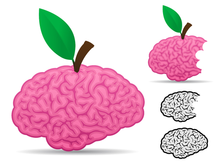 Brain fruit food collection Vector