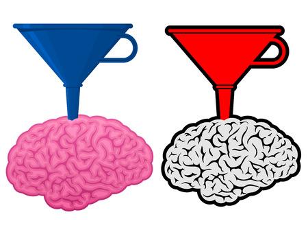 Brain with cone funnel