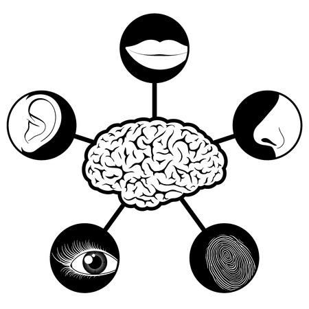 sense: Five senses icons controlled controlled by brain Illustration