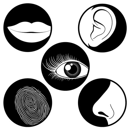 sense: Five senses icons