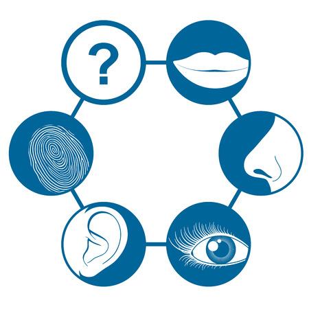 sense of: Six senses icons  Illustration