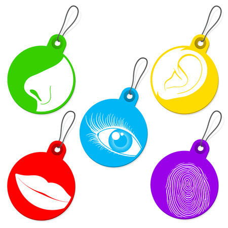 Five senses tag set Stock Illustratie