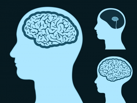 Male head silhouette with small and big brain Stock Illustratie