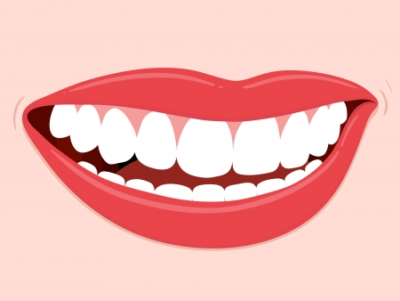Smiling Mouth Healthy Teeth, illustration of womans mouth with white healthy dentition Vector