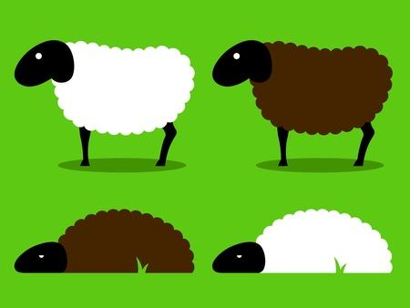 mouton noir: Groupe de dessin anim� mouton blanc et noir