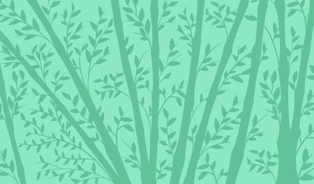 dainty: Background of a bamboo plantation with tall straight stems and dainty leaves in shades