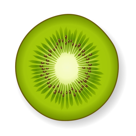 fruit clipart: Round section of a tropical green fresh juicy kiwi fruit with visible seeds and core isolated with shadow on white vector illustration