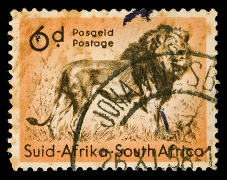 postal office: Vintage canceled postage stamp with lion illustration. South Africa, Johannesburg, 1958. Stock Photo