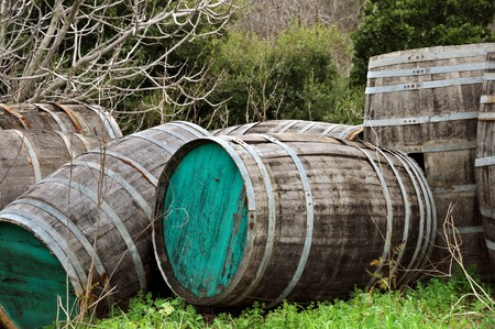 Weathered vintage wooden barrels in a forest. Stock Photo - 7060021
