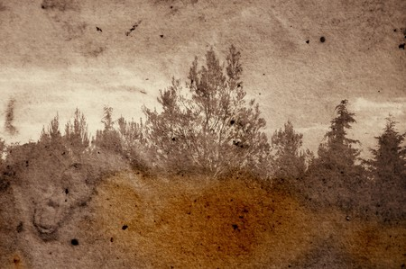 deterioration: Vintage stained photograph of trees in forest. Abstract illustration.
