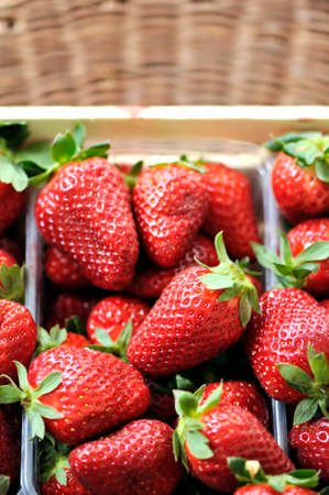 freshly: Basket full of freshly picked strawberries. Selective focus.