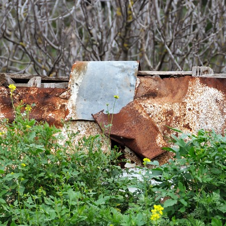 Rusty aluminum sheeting and blooming wild flowers. Stock Photo - 7714763