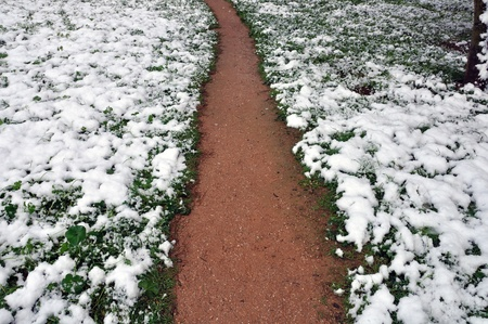 dirtroad: Muddy footpath through snow covered plants. Winter landscape.