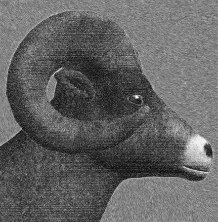 Goat with horns sketch digital 3d illustration. illustration