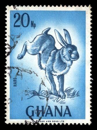 GHANA - CIRCA 1974. Vintage canceled postage stamp with wild rabbit illustration circa 1974. Stock Illustration - 9428796
