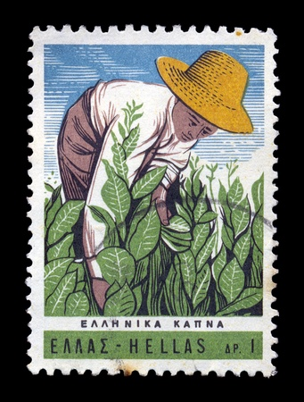 circa: GREECE - CIRCA 1966. Vintage postage stamp with farmer harvesting tobacco plants illustration, circa 1966.