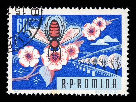 ROMANIA - CIRCA 1963. Vintage postage stamp printed by the Romanian Post shows honey bee on almond tree blossom illustration, circa 1963. illustration