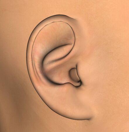 Human ear background detail. 3d illustration design element. illustration