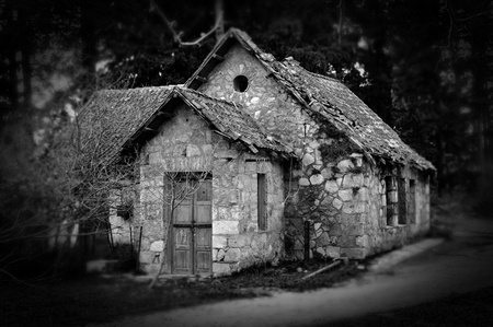 Derelict haunted stone house and dirt road in the woods. Black and white.