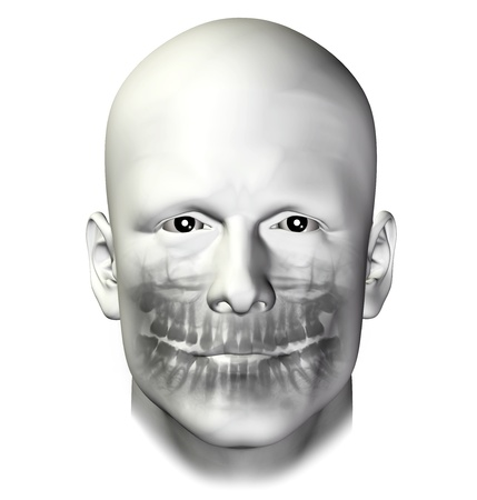 Teeth dental scan x-ray of adult male  3d illustration on white background  illustration
