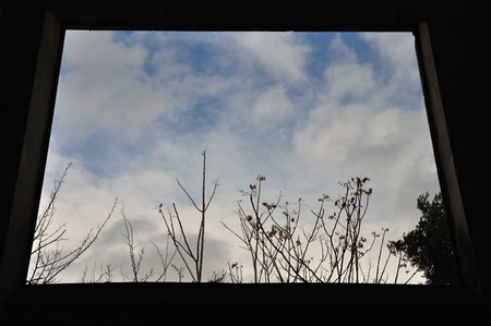 View to nature scene through window frame in dark interior  Trees and winter sky  Stock Photo - 13547377