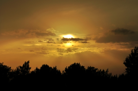 Evening sky behind clouds. Orange sunset and tree silhouettes. Stock Photo - 16185917