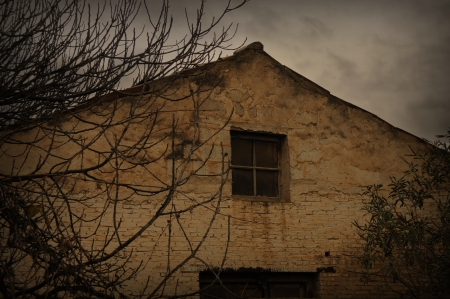 ramshackle: Abandoned house roof and tree branches on rainy day  Architectural detail