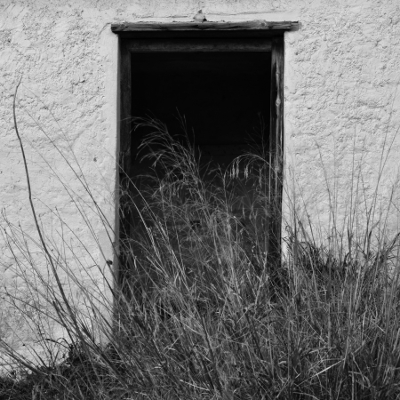 ramshackle: Broken door of abandoned house and overgrown plants. Black and white. Stock Photo