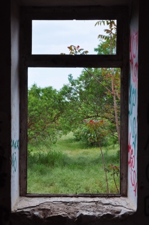 Abandoned house window frame with view to nature scene. Abstract landscape. photo