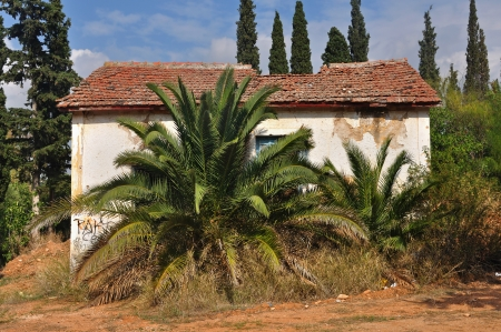 obscured: Abandoned house with collapsed roof obscured by overgrown plants. Stock Photo