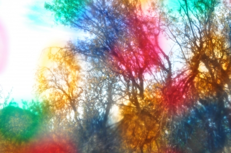 Tree branches though colorful painted glass. Blurry forest abstract landscape. photo