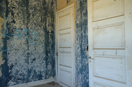 Two wooden doors and blue peeling wall with torn wallpaper in abandoned house.