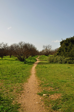 dirtroad: Crooked trail footpath through park. Green grass and blue sky landscape.