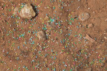 jimmies: Worker ants gathering sweet colorful sprinkles. Abstract background. Stock Photo