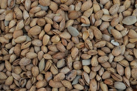 Dried almonds in shell culinary nuts food background.