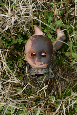 Spooky burned plastic doll head. Old discarded weathered toy in the woods. Zdjęcie Seryjne