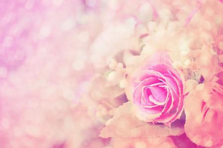 ヴィンテージ色のバラの背景 写真素材